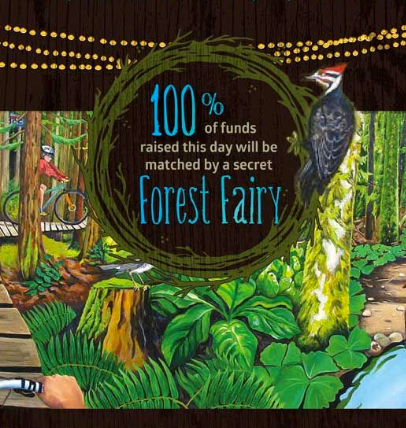 Fundraising efforts t save the Cumberland Forest are extraordinary | Currently Cumberland