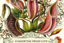The Fat Oyster Presents: Swamp-Love & a Four Storey Forest